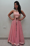 rashi khanna at Bengal tiger audio-thumbnail-15