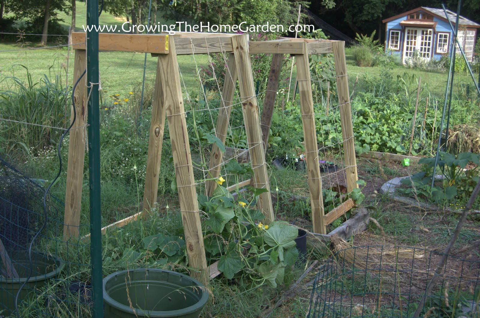 Homemade cucumber or melon trellises growing the home garden for Garden trellis ideas