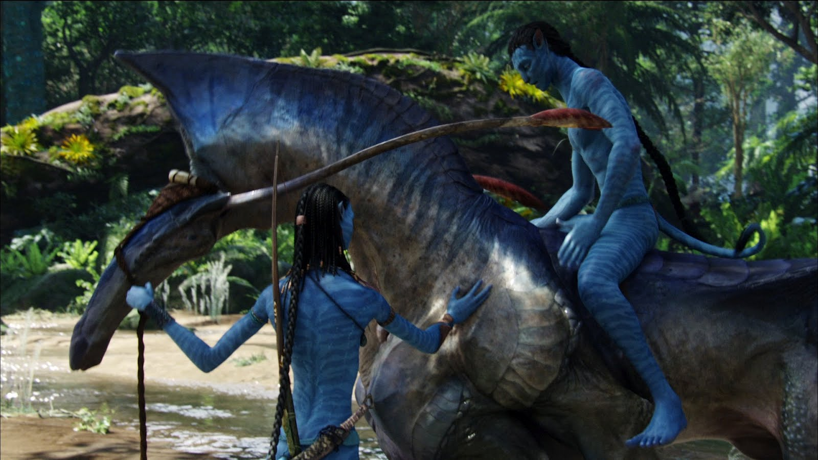 The Film Temple James Cameron Roundtable 9 Avatar