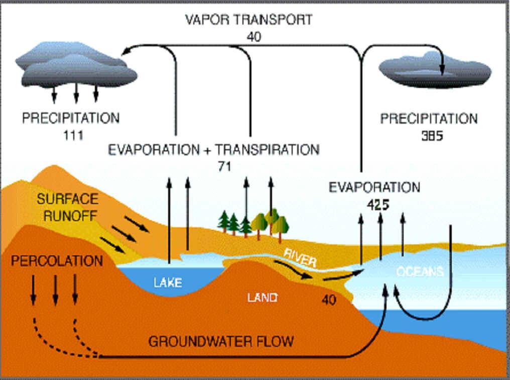 Daur Biogeokimia Aktifitas Ilmu Pengetahuan Alam