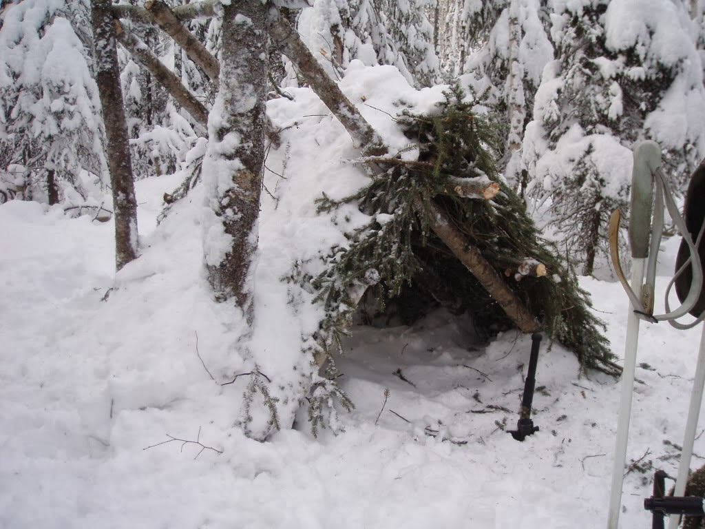 Project winter survival vancouver island