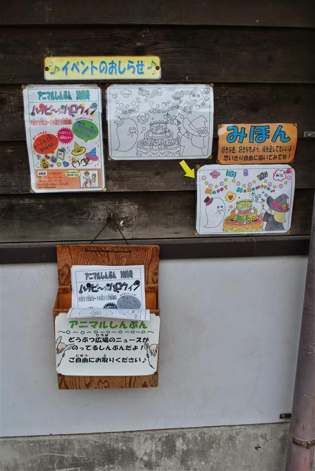 アニマル新聞10月号!