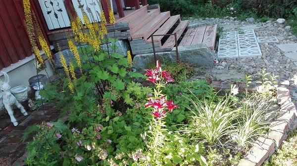Hiekkalaatikon vieressä oleva kukkapenkki