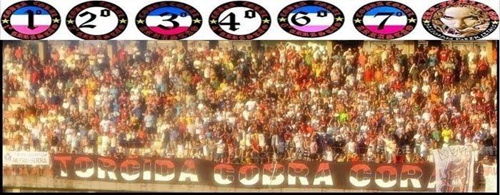 ..::TORCIDA COBRA CORAL::..