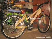 Sepeda Gunung Evergreen Blaze 2, 1
