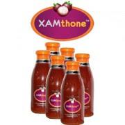 Xamthone 6 btl / Dus