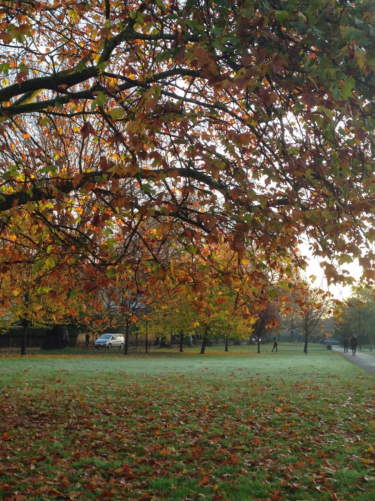 Parc London