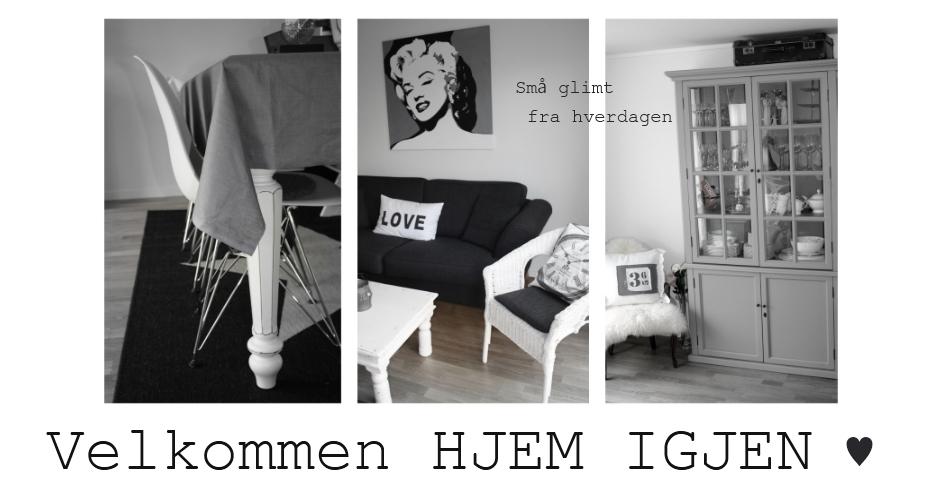 ♥  Hjem igjen  ♥