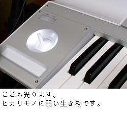 KORG M3