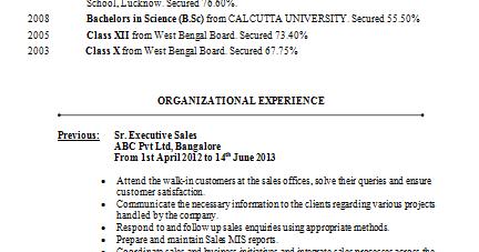 professional resume mba marketing resume - Mba Marketing Resume