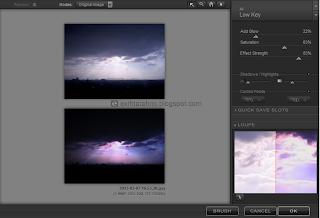 cara membuat efek ROL pada foto dengan nik color efex pro 3.0
