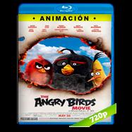 Angry Birds: La película (2016) BRRip 720p Audio Dual Latino-Ingles