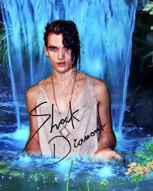 Shock Diamond autographed poster