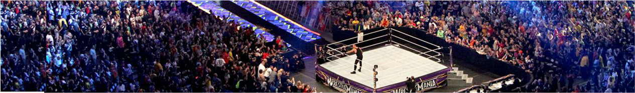 WWE MONEY IN THE BANK 2014,WWE,NOTISLUCHA,NOTISLUCHA.COM,WWE,TNA,WRESTLING,LUCHA,LIBRE