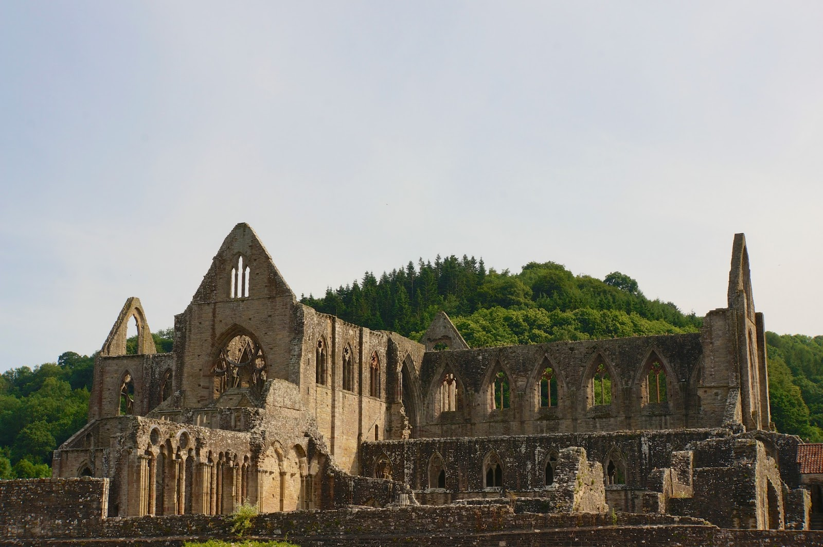 "close reading on tintern abbey Throughout wordsworth's poem ""lines written a few miles above tintern abbey"" there is a feeling of someone looking back and remembering."