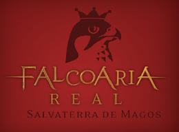 FALCOARIA EM PORTUGAL