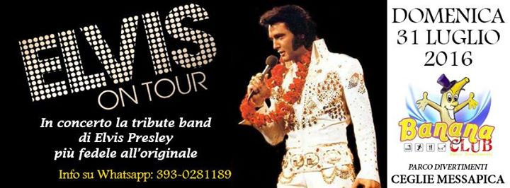 ELVIS ON TOUR in Concerto - Live Tribute Band