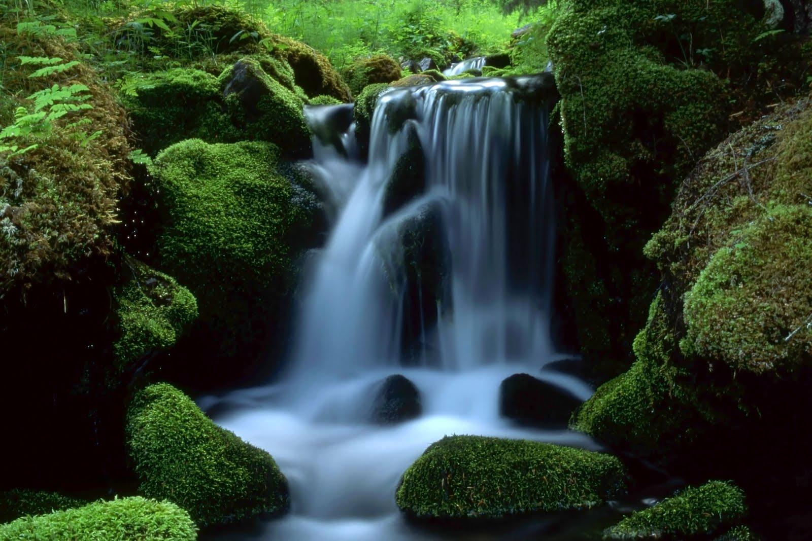 Cascadas en movimiento con sonidos para fondo de pantalla for Piedras para cascadas