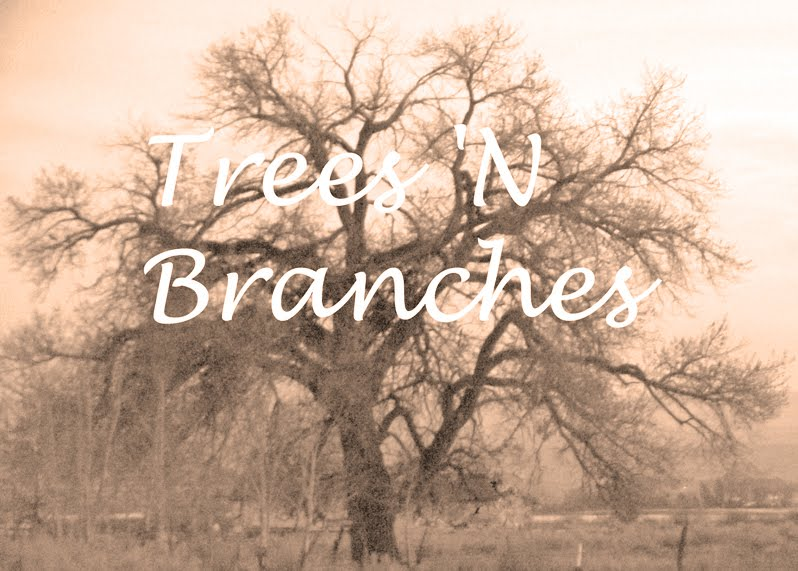 Trees 'N Branches