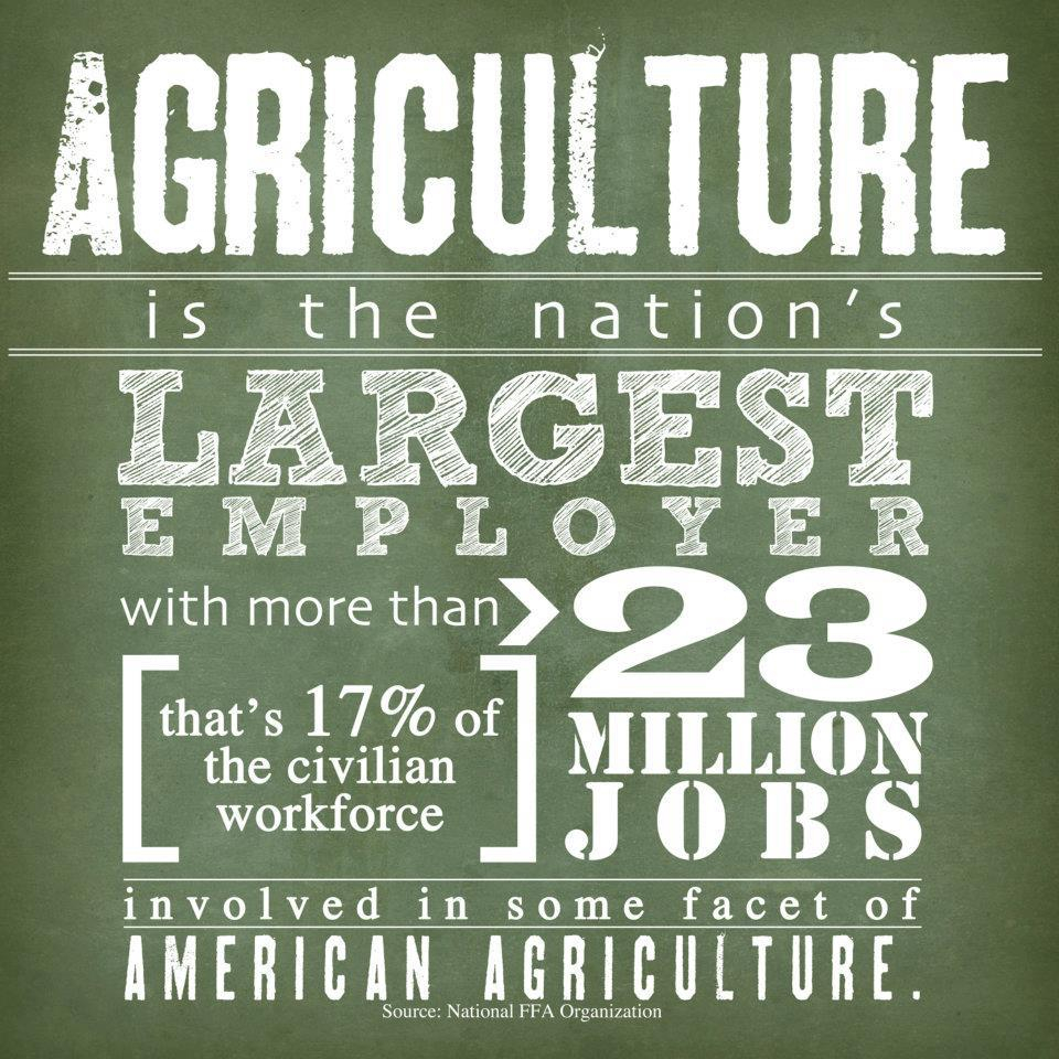 agriculture education Agricultural education graduates possess a unique skill set in agriculture and education which positions them to take advantage of the shortage of certified agricultural educators throughout the country and the shortage of qualified agriculturalists required by the private and public sectors.