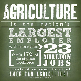 Agriculture best college majors for the future