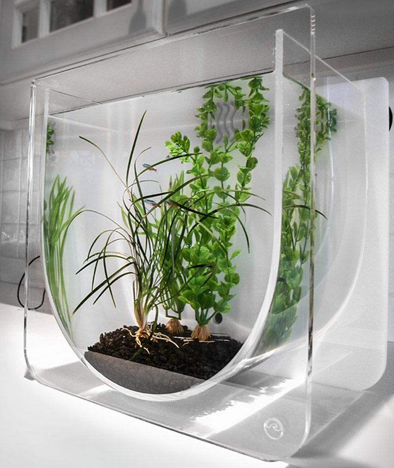 Cool fish tanks modern funtrublog awesome aquariums 5 for Awesome fish tanks