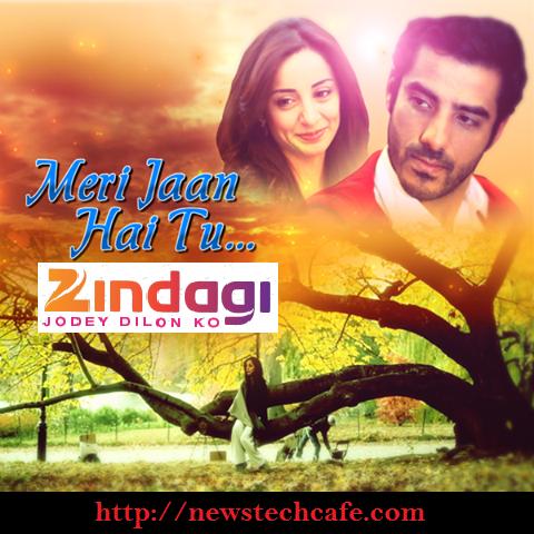 Meri Jaan Hai Tu Pakistani Show on Upcoming Zindagi Tv Story | Cast | Timing