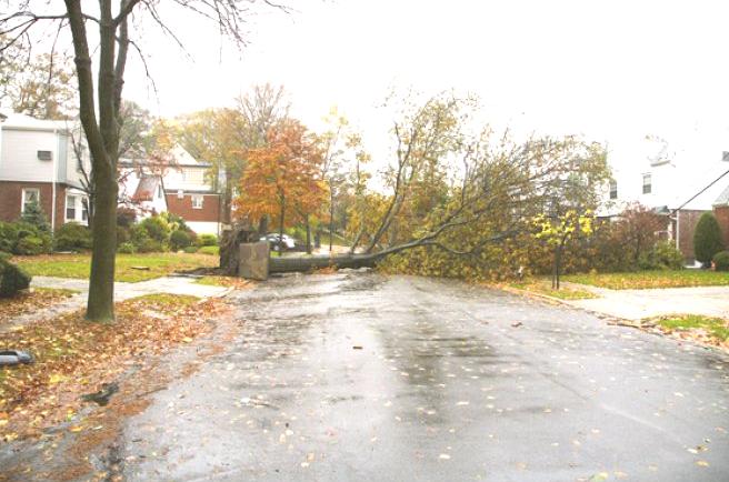 Hurricane Sandy Maine
