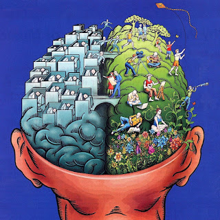 insan beyni, zeka, kişisel gelişim