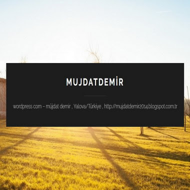 mujdatdemir - wordpress com