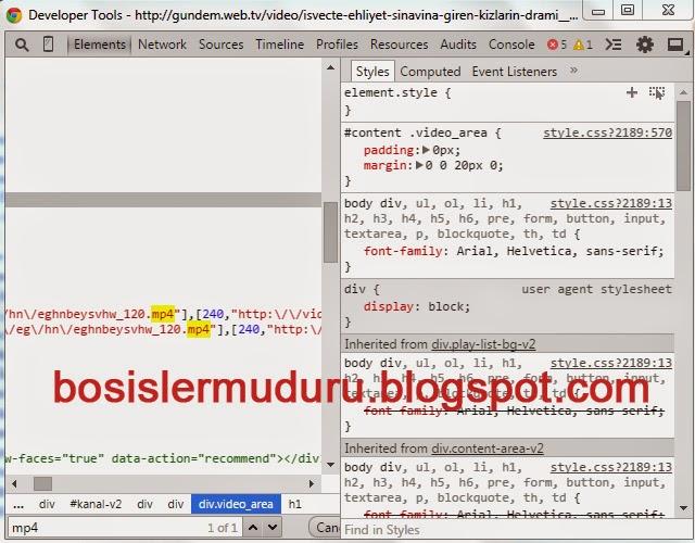 google chrome internet taratıcısı öğreyi denetle özelliği