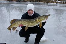 Bra fisk! 8.0kg