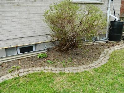 Graydon spring garden cleanup after Paul Jung Gardening Services Toronto