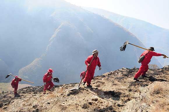 Incendio en Falda de La Quiñua consume más de 100 hectáreas