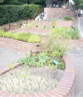 The Herb Museum in the Nunobiki Herb Gardens, Kobe. There are lots of herbs in little gardens