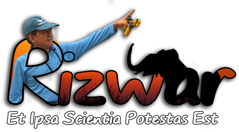 Rizwar Personal Site