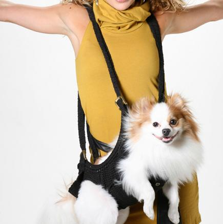 Must Have Travel Gadgets For Dogs (15) 11