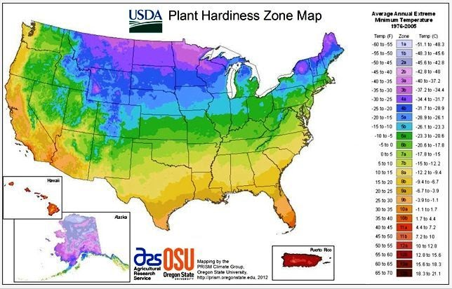 Jeffco gardener 2012 usda hardiness zone map by carol king for Gardening zones colorado