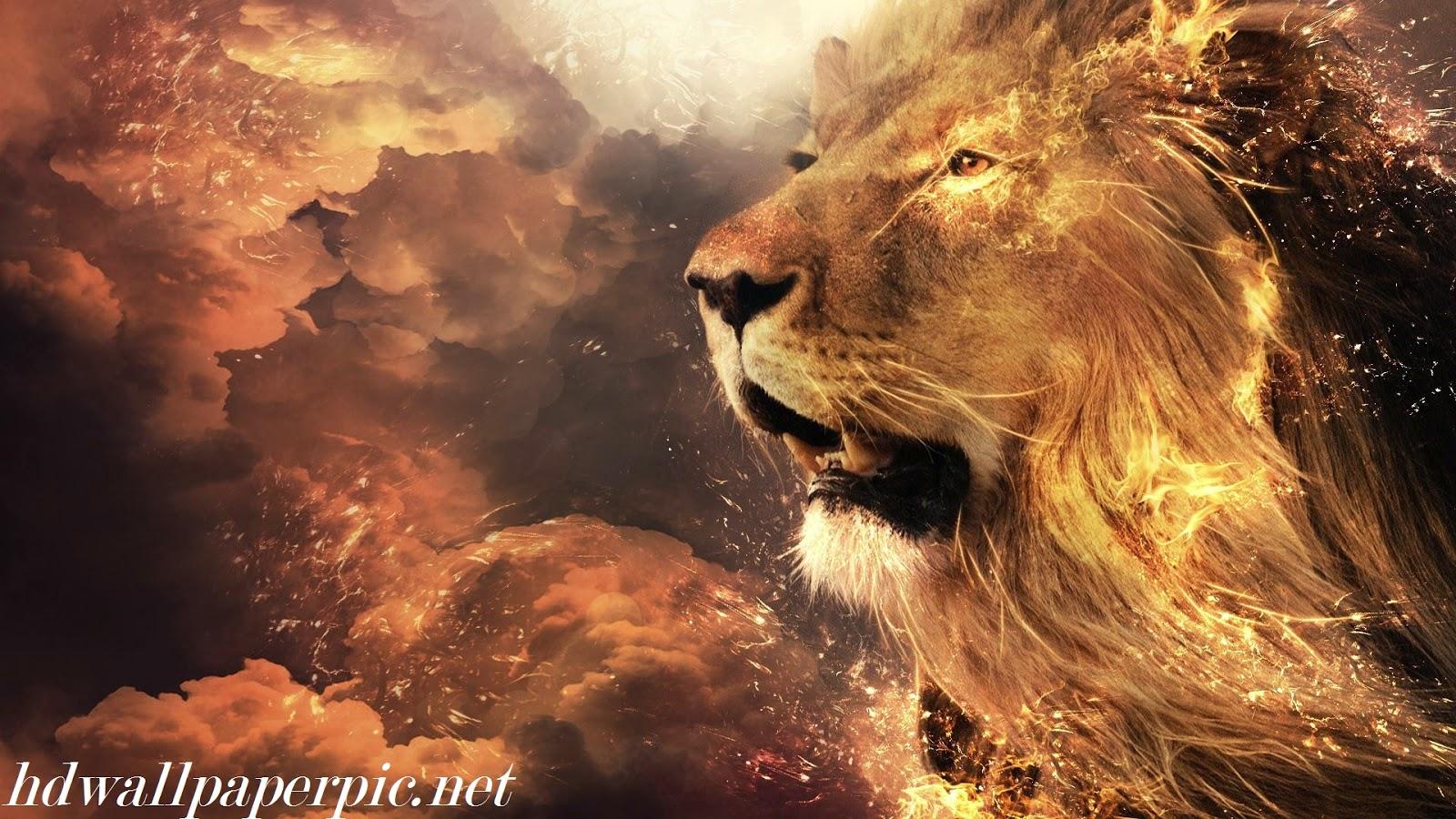 Brown Roar HD Wallpaper