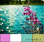 Défi couleurs de mars