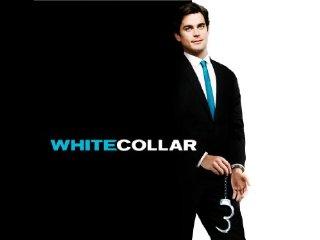 White Collar Crime Criminals