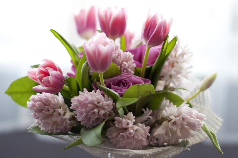 С днем рожденья, друзья! здоровья вам, удачи, весеннего настроения развернуть