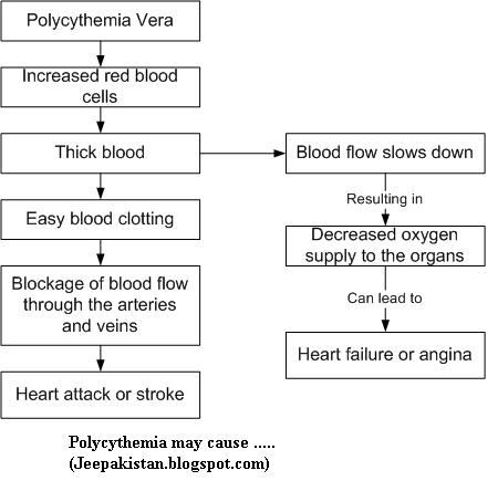 Polycythemia vera and viagra