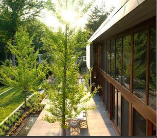 Fotos de terrazas terrazas y jardines terrazas de casas for Pisos para terrazas y jardines