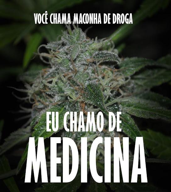 MACONHA -> A melhor medicina do planeta!