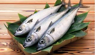 ikan sumber protein