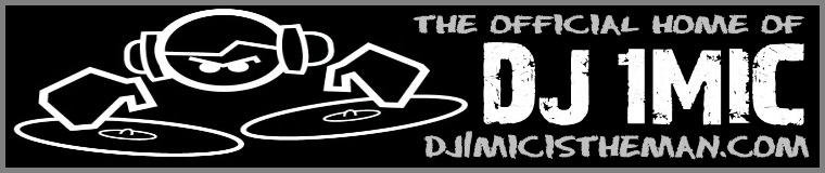 DJ 1Mic