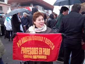RETIRO DEL PROYECTO DE CARRERA DOCENTE DESDE EL CONGRESO