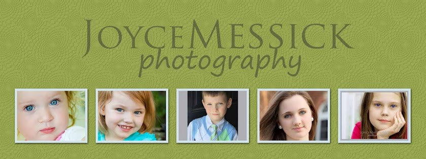 JoyceMessick Photography