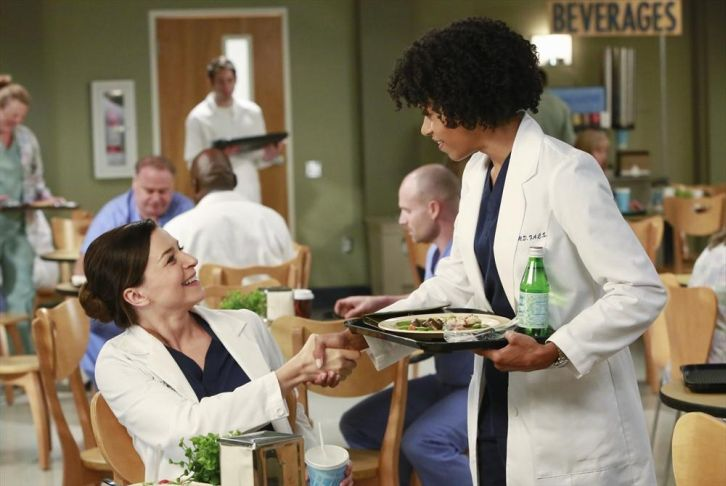 Grey's Anatomy - Episode 11.02 - Puzzle With a Piece Missing - Promotional Photos